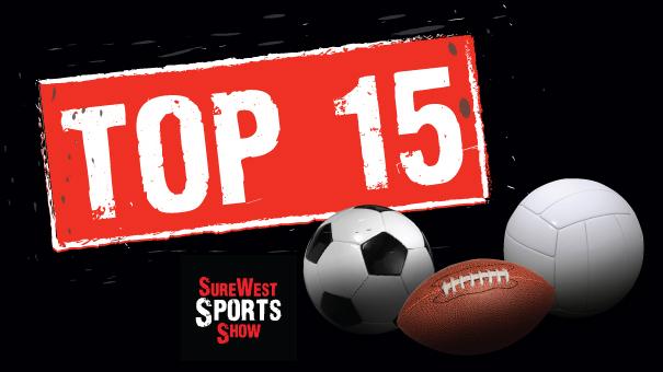 Top 15 logo
